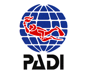 Certificate 2 Padi Seal Team and Master Seal Team
