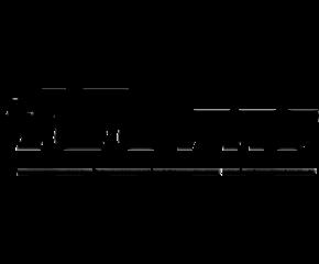 ico-pro-logo